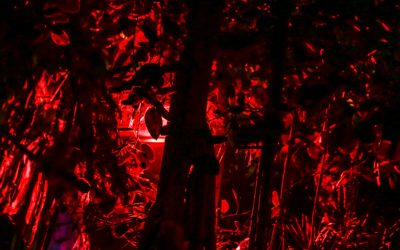ScarePod #014 – Live vanaf The Haunt of en The Villains